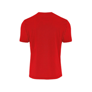 VC Sneek heren t-shirt Everton rood back