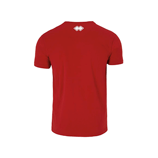 VC Sneek heren t-shirt Professional rood back